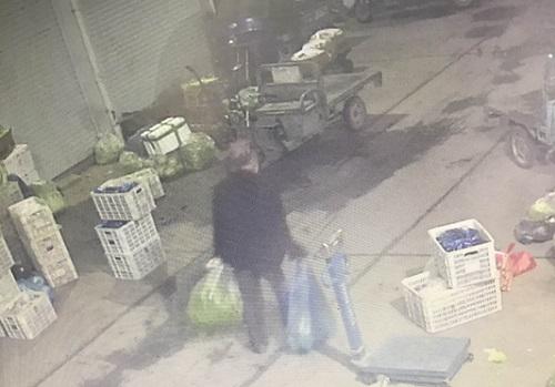 視頻曝光:中風老人在天長偷起菜來健步如飛