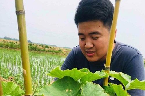 海歸碩士回老家當農民,天長這個90后要火 作者: 來源:中新網
